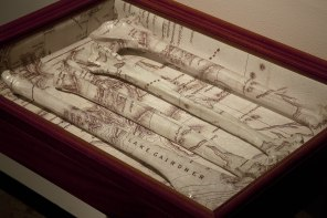 The Past Remains, 2009, kangaroo bones, map, timber box. Private collection.