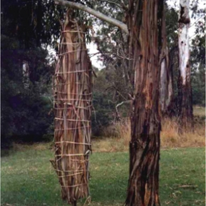 Nillumbik Ephemeral Art Prize, Warrandyte, Vic
