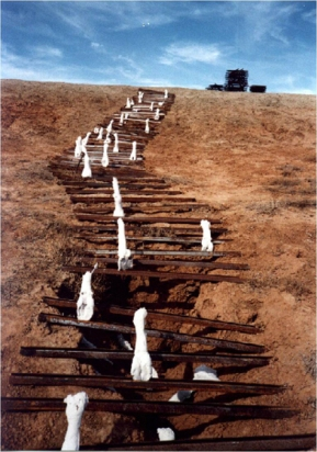 Terra Infirma, Mildura Palimpsest, 2001