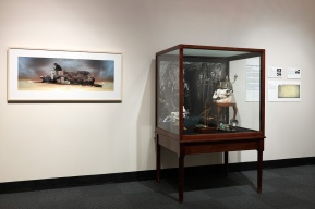 Exhibition view, South Australian Museum