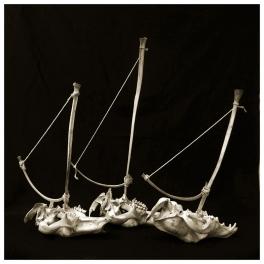 Skull boats, 2014, photo on brushed aluminium. Edition of 3.